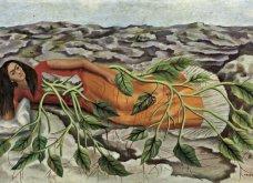 Οι σπουδαιότεροι πίνακες της διάσημης Φρίντα Κάλο: Χρώμα πάθος & ονειρικό πινέλο (ΦΩΤΟ) - Κυρίως Φωτογραφία - Gallery - Video 14