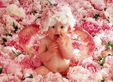 Anne Geddes : Η πιο τρυφερή φωτογράφος ! Τα διάσημα μωράκια της έχουν πουληθεί σε 19 εκατομμύρια αντίτυπα σε 84 χώρες (ΦΩΤΟ-ΒΙΝΤΕΟ) - Κυρίως Φωτογραφία - Gallery - Video 15
