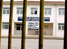 Κόκκινο για την υγεία στο Ακραίφνιο Βοιωτίας- Κλειστό το σχολείο αφού αρρώστησαν 45 από τα 60 παιδιά - Ασθενείς και οι γέροντες - Κυρίως Φωτογραφία - Gallery - Video