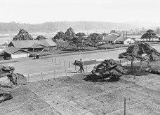 """Όταν μία ολόκληρη """"ψεύτικη"""" πόλη δημιουργήθηκε κατά τη διάρκεια του Β' Παγκοσμίου Πολέμου για να.... (ΦΩΤΟ- ΒΙΝΤΕΟ) - Κυρίως Φωτογραφία - Gallery - Video"""