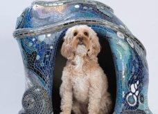 Φαντασμαγορικές εικόνες από τα πιο πρωτότυπα σπίτια σκύλων - Σχεδιάστηκαν για καλό σκοπό   - Κυρίως Φωτογραφία - Gallery - Video