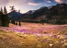 Τι λέτε; Να ξεχυθούμε στα λιβάδια & τους αγρούς της Πολωνίας για να αρχίσουμε όμορφα την εβδομάδα (ΦΩΤΟ) - Κυρίως Φωτογραφία - Gallery - Video