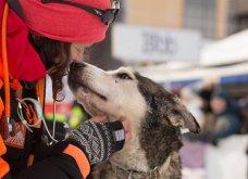 Μόλις δόθηκαν στην δημοσιότητα: Οι ωραιότερες φωτογραφίες με σκύλους για το 2018 - Κυρίως Φωτογραφία - Gallery - Video 29