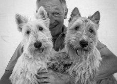 Μόλις δόθηκαν στην δημοσιότητα: Οι ωραιότερες φωτογραφίες με σκύλους για το 2018 - Κυρίως Φωτογραφία - Gallery - Video 35