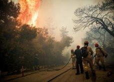 Κινέτα: Η αποτύπωση της καταστροφικής φωτιάς! Συγκλονιστικές εικόνες  - Κυρίως Φωτογραφία - Gallery - Video 4