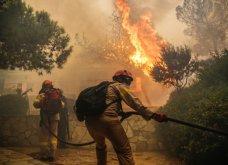 Κινέτα: Η αποτύπωση της καταστροφικής φωτιάς! Συγκλονιστικές εικόνες  - Κυρίως Φωτογραφία - Gallery - Video 5