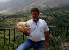 Μανιτάρι γίγας ανακαλύφθηκε για πρώτη φορά στην Κρήτη – Δείτε φωτογραφίες - Κυρίως Φωτογραφία - Gallery - Video
