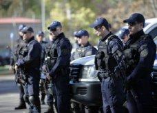 Πήλιο: 28χρονος έβγαλε το λυκόσκυλο του από το αυτοκίνητο για να όρμηξει στους αστυνομικούς - Τι έκρυβε - Κυρίως Φωτογραφία - Gallery - Video