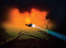 Underwater Photo 2018: Οι καλύτερες υποβρύχιες φωτογραφίες που βραβεύτηκαν από το Scuba Diving Magazine   - Κυρίως Φωτογραφία - Gallery - Video 7