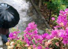 Καιρός: Πάρτε ομπρέλα - Νεφώσεις και βροχές σήμερα, στους 25 βαθμούς η θερμοκρασία (Βίντεο) - Κυρίως Φωτογραφία - Gallery - Video