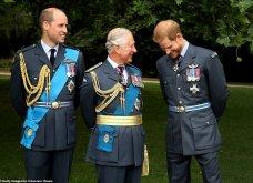 9 φωτογραφίες της βασιλικής οικογένειας για πρώτη φορά: Ο Κάρολος με τον εγγονό του, με τις κότες του και με όλη τη φαμίλια (Φωτό) - Κυρίως Φωτογραφία - Gallery - Video 5