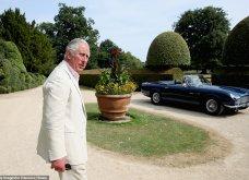 9 φωτογραφίες της βασιλικής οικογένειας για πρώτη φορά: Ο Κάρολος με τον εγγονό του, με τις κότες του και με όλη τη φαμίλια (Φωτό) - Κυρίως Φωτογραφία - Gallery - Video 6