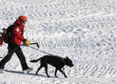 Πραγματικό θαύμα: 12χρονος ανασύρθηκε ζωντανός από χιονοστιβάδα - Έσπασε μόνο το πόδι του - Κυρίως Φωτογραφία - Gallery - Video