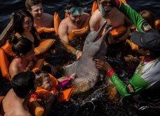 Οι 30 πιο συγκινητικές φωτογραφίες της χρονιάς από το National Geographic  - Κυρίως Φωτογραφία - Gallery - Video