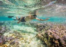 Οι 30 πιο συγκινητικές φωτογραφίες της χρονιάς από το National Geographic  - Κυρίως Φωτογραφία - Gallery - Video 14