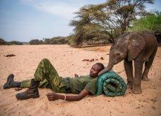 Οι 30 πιο συγκινητικές φωτογραφίες της χρονιάς από το National Geographic  - Κυρίως Φωτογραφία - Gallery - Video 22