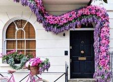 Καλλιτέχνιδα καταγράφει τις πιο όμορφες μπροστινές πόρτες του Λονδίνου: Υπέροχα λουλούδια & χρώματα - Φώτο  - Κυρίως Φωτογραφία - Gallery - Video 2