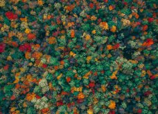 Οι 68 καλύτερες φωτογραφίες από την περασμένη χρονιά με drone - Είναι καταπληκτικές!   - Κυρίως Φωτογραφία - Gallery - Video 37