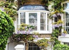 Καλλιτέχνιδα καταγράφει τις πιο όμορφες μπροστινές πόρτες του Λονδίνου: Υπέροχα λουλούδια & χρώματα - Φώτο  - Κυρίως Φωτογραφία - Gallery - Video 3