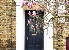 Καλλιτέχνιδα καταγράφει τις πιο όμορφες μπροστινές πόρτες του Λονδίνου: Υπέροχα λουλούδια & χρώματα - Φώτο  - Κυρίως Φωτογραφία - Gallery - Video 6