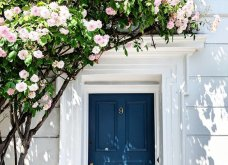 Καλλιτέχνιδα καταγράφει τις πιο όμορφες μπροστινές πόρτες του Λονδίνου: Υπέροχα λουλούδια & χρώματα - Φώτο  - Κυρίως Φωτογραφία - Gallery - Video 13