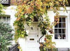 Καλλιτέχνιδα καταγράφει τις πιο όμορφες μπροστινές πόρτες του Λονδίνου: Υπέροχα λουλούδια & χρώματα - Φώτο  - Κυρίως Φωτογραφία - Gallery - Video 15