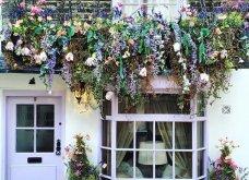 Καλλιτέχνιδα καταγράφει τις πιο όμορφες μπροστινές πόρτες του Λονδίνου: Υπέροχα λουλούδια & χρώματα - Φώτο  - Κυρίως Φωτογραφία - Gallery - Video 17