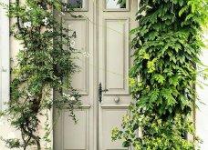 Καλλιτέχνιδα καταγράφει τις πιο όμορφες μπροστινές πόρτες του Λονδίνου: Υπέροχα λουλούδια & χρώματα - Φώτο  - Κυρίως Φωτογραφία - Gallery - Video 19
