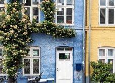 Καλλιτέχνιδα καταγράφει τις πιο όμορφες μπροστινές πόρτες του Λονδίνου: Υπέροχα λουλούδια & χρώματα - Φώτο  - Κυρίως Φωτογραφία - Gallery - Video 23