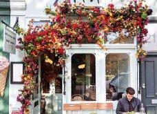 Καλλιτέχνιδα καταγράφει τις πιο όμορφες μπροστινές πόρτες του Λονδίνου: Υπέροχα λουλούδια & χρώματα - Φώτο  - Κυρίως Φωτογραφία - Gallery - Video 24