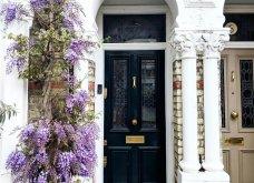 Καλλιτέχνιδα καταγράφει τις πιο όμορφες μπροστινές πόρτες του Λονδίνου: Υπέροχα λουλούδια & χρώματα - Φώτο  - Κυρίως Φωτογραφία - Gallery - Video 26