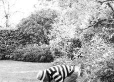 O Κριστιάν Λουμπουτέν μένει εδώ! - Σε πύργο της Γαλλίας με τόσο ωραίο κήπο που παίρνει βραβείο (φώτο) - Κυρίως Φωτογραφία - Gallery - Video 16