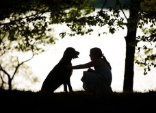 """Ποιες είναι οι νικήτριες φωτογραφίες στο διαγωνισμό """"Σκύλος της χρονιάς 2019""""; - Ιδού (φώτο) - Κυρίως Φωτογραφία - Gallery - Video 9"""