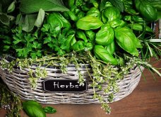 25 όμορφες ιδέες για να φυτέψετε βότανα & μυρωδικά σε γλαστρούλες ή κηπίσκους - Πράσινο & άρωμα στη ζωή σας (φώτο)  - Κυρίως Φωτογραφία - Gallery - Video 2