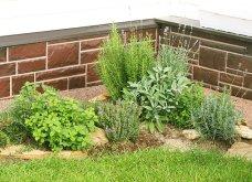 25 όμορφες ιδέες για να φυτέψετε βότανα & μυρωδικά σε γλαστρούλες ή κηπίσκους - Πράσινο & άρωμα στη ζωή σας (φώτο)  - Κυρίως Φωτογραφία - Gallery - Video 3