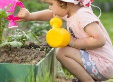 25 όμορφες ιδέες για να φυτέψετε βότανα & μυρωδικά σε γλαστρούλες ή κηπίσκους - Πράσινο & άρωμα στη ζωή σας (φώτο)  - Κυρίως Φωτογραφία - Gallery - Video 5