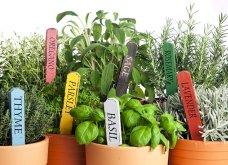 25 όμορφες ιδέες για να φυτέψετε βότανα & μυρωδικά σε γλαστρούλες ή κηπίσκους - Πράσινο & άρωμα στη ζωή σας (φώτο)  - Κυρίως Φωτογραφία - Gallery - Video 10