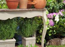 25 όμορφες ιδέες για να φυτέψετε βότανα & μυρωδικά σε γλαστρούλες ή κηπίσκους - Πράσινο & άρωμα στη ζωή σας (φώτο)  - Κυρίως Φωτογραφία - Gallery - Video 12