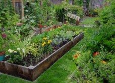 25 όμορφες ιδέες για να φυτέψετε βότανα & μυρωδικά σε γλαστρούλες ή κηπίσκους - Πράσινο & άρωμα στη ζωή σας (φώτο)  - Κυρίως Φωτογραφία - Gallery - Video 17