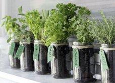 25 όμορφες ιδέες για να φυτέψετε βότανα & μυρωδικά σε γλαστρούλες ή κηπίσκους - Πράσινο & άρωμα στη ζωή σας (φώτο)  - Κυρίως Φωτογραφία - Gallery - Video 18