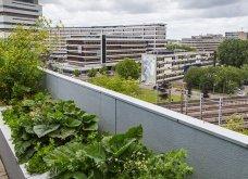 25 όμορφες ιδέες για να φυτέψετε βότανα & μυρωδικά σε γλαστρούλες ή κηπίσκους - Πράσινο & άρωμα στη ζωή σας (φώτο)  - Κυρίως Φωτογραφία - Gallery - Video 19