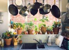 25 όμορφες ιδέες για να φυτέψετε βότανα & μυρωδικά σε γλαστρούλες ή κηπίσκους - Πράσινο & άρωμα στη ζωή σας (φώτο)  - Κυρίως Φωτογραφία - Gallery - Video 25