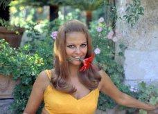 Vintage pics: Κλαούντια Καρντινάλε - Η μεγαλύτερη Ιταλίδα σταρ των 60'ς σε ανεπανάληπτες πόζες (φώτο) - Κυρίως Φωτογραφία - Gallery - Video 7