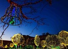 Τα πιο ωραία χριστουγεννιάτικα δέντρα στις Η.ΠΑ. - Εκεί που ξοδεύουν 3 δισ. δολάρια το χρόνο για έλατο! (φώτο)  - Κυρίως Φωτογραφία - Gallery - Video 5