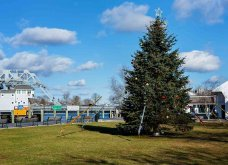 Τα πιο ωραία χριστουγεννιάτικα δέντρα στις Η.ΠΑ. - Εκεί που ξοδεύουν 3 δισ. δολάρια το χρόνο για έλατο! (φώτο)  - Κυρίως Φωτογραφία - Gallery - Video 8