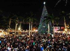 Τα πιο ωραία χριστουγεννιάτικα δέντρα στις Η.ΠΑ. - Εκεί που ξοδεύουν 3 δισ. δολάρια το χρόνο για έλατο! (φώτο)  - Κυρίως Φωτογραφία - Gallery - Video 10
