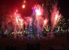 Τα πιο ωραία χριστουγεννιάτικα δέντρα στις Η.ΠΑ. - Εκεί που ξοδεύουν 3 δισ. δολάρια το χρόνο για έλατο! (φώτο)  - Κυρίως Φωτογραφία - Gallery - Video 18