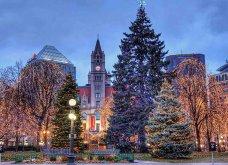 Τα πιο ωραία χριστουγεννιάτικα δέντρα στις Η.ΠΑ. - Εκεί που ξοδεύουν 3 δισ. δολάρια το χρόνο για έλατο! (φώτο)  - Κυρίως Φωτογραφία - Gallery - Video 20