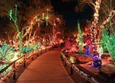 Τα πιο ωραία χριστουγεννιάτικα δέντρα στις Η.ΠΑ. - Εκεί που ξοδεύουν 3 δισ. δολάρια το χρόνο για έλατο! (φώτο)  - Κυρίως Φωτογραφία - Gallery - Video 24