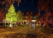 Τα πιο ωραία χριστουγεννιάτικα δέντρα στις Η.ΠΑ. - Εκεί που ξοδεύουν 3 δισ. δολάρια το χρόνο για έλατο! (φώτο)  - Κυρίως Φωτογραφία - Gallery - Video 26